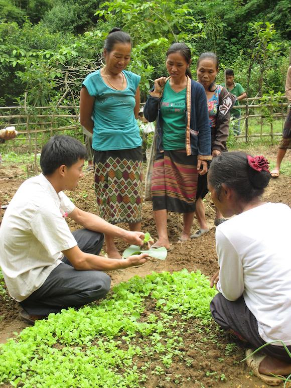 Agrisud_Laos - copie