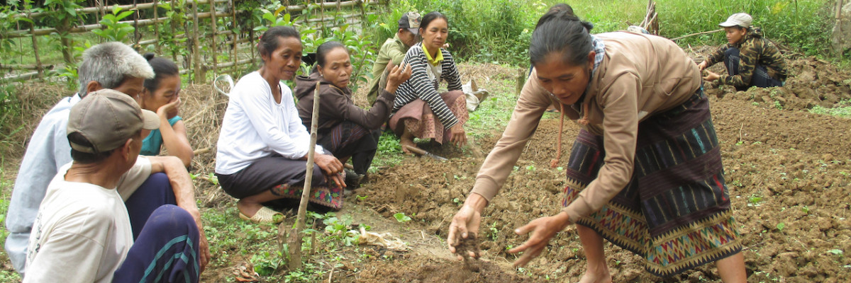 Agrisud_Laos2 - copie