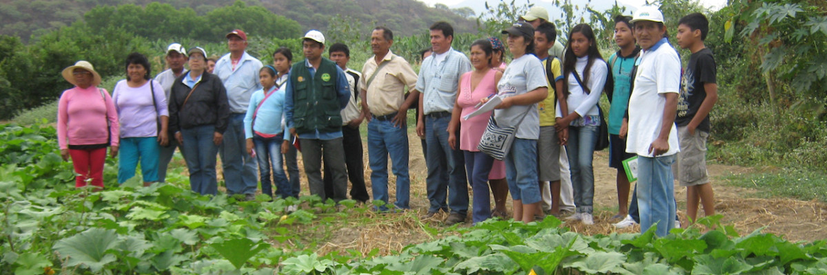 Aider_Peru_agroecological_ practices - copie
