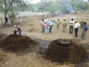 Aider_Peru_agroecological_ practices2