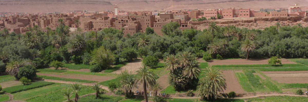 Raddo_Oasis_Maroc_vallee_dades - copie